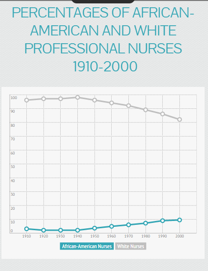 diversity in nursing chart - 2