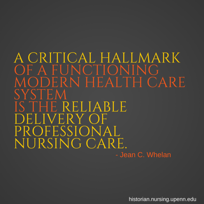 A critical hallmark of a functioning health care system is the reliable delivery of professional nursing care  - Jean C. Whelan